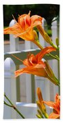 Daylilies On Picket Fence Beach Towel