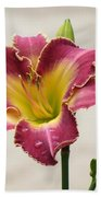 Daylily Delight Beach Towel