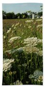 Days Of Queen Annes Lace Beach Towel