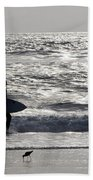 Days Of Summer Beach Towel