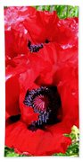 Dazzling Red Poppies Beach Towel