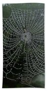 Db6325-dc Spiderweb On Sonoma Mountain Beach Towel