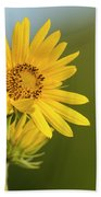 Ddp Djd Sunflower 2639 Beach Towel