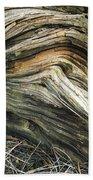 Dead Tree Textures Beach Towel