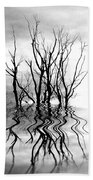 Dead Trees Bw Beach Towel
