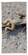 Death By Gum Beach Towel