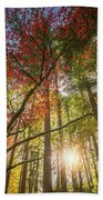 Decorated By Japanese Maple Beach Towel