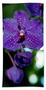 Deep Blue Orchid Beach Towel