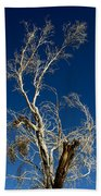 Deep Blue White Tree Beach Towel
