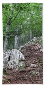 Deep Forest Rocky Path Nature Beach Towel