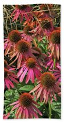 Deep Pink Echinacea Straw Flowers Green Leaf And Grass Background 2 9132017 Beach Towel