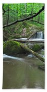 Deep Woods Stream 2 Beach Towel