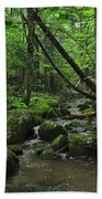 Deep Woods Stream 3 Beach Towel
