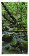 Deep Woods Stream Beach Towel
