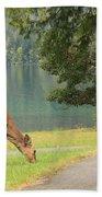 Deer By Crescent Lake Beach Towel