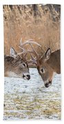 Deer Fight Beach Towel