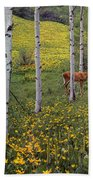 Deer In Spring Beach Towel