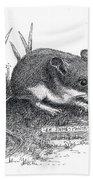Deer Mouse Beach Sheet