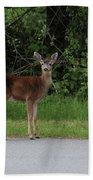Deer On Road Beach Towel