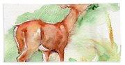 Deer Painting In Watercolor Beach Towel
