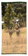 Deer Tails Beach Towel