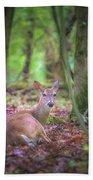 Deer1 Beach Towel