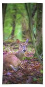 Deer1 Beach Sheet