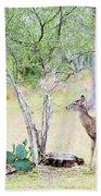 Deer19 Beach Towel