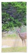 Deer21 Beach Towel