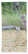 Deer47 Beach Towel