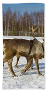 Deers Running On Snow Beach Towel