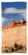 Delicate Arch Famous Landmark In Arches National Park Utah Beach Towel