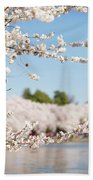 Delicate Blossoms Over The Tidal Basin Beach Towel