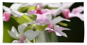 Delicate Orchids By Sharon Cummings Beach Sheet