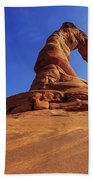 Delicate Perspective Beach Towel by Chad Dutson