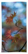 Delicate Signs Of Autumn Beach Towel