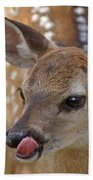 Delicious Deer Beach Towel
