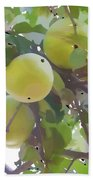 Delicious Yellow Apple In Summer Beach Towel