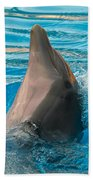 Delphin 2 Beach Towel