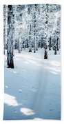 Dense Spruce Snowy Forest Beach Towel