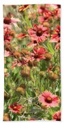 Desert Beauties Beach Towel