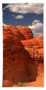Desert Brain Rocks Beach Towel
