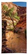 Desert Canyon Paradise - Coyote Gulch - Utah Beach Towel