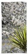 Desert Green Beach Towel