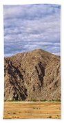 Desert Oasis Beach Towel