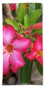 Desert Rose Or Chuanchom Dthb2108 Beach Towel
