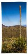 Desert Spoon #3 Beach Towel