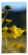 Desert Sunflower Beach Towel