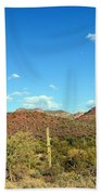 Desert View 340 Beach Towel