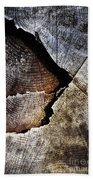 Detail Old Sawn Stump Beach Towel
